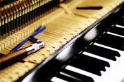 Настройка пианино/роялей. Реставрация / Ремонт
