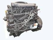 Двигатель МАЗ зубрёнок